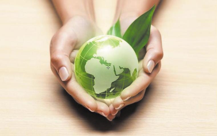 Célébration de la journée mondiale de l'environnement ce 5 Juin